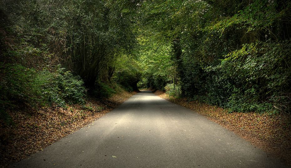 RoadDriver - Autumn road image