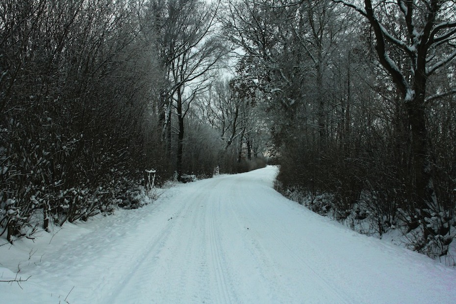 RoadDriver - Snowy road image